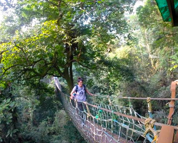Ash Bhattacharjee crossing the rainforest canopy in Halimun National Park &copy Kelly Nguyen