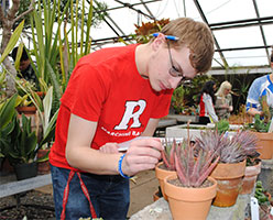Student evaluating a plant for potential inclusion in a course project