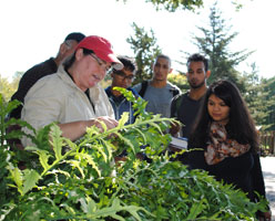 2016 Plant Diversity and Evolution Lab